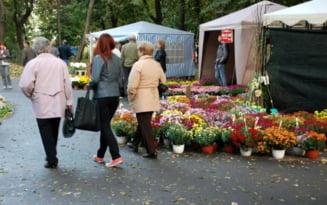 Festivalul Florilor de Toamna, organizat in premiera in Parcul Monument din Braila