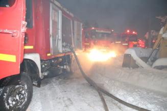 Firea l-a demis pe managerul Circului Globus dupa incendiul in care au murit 11 animale