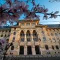 Firea merge mai departe cu companiile municipale. Tocmai li s-au votat bugetele pentru anul 2020
