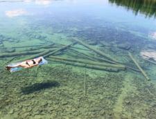 Flathead lac