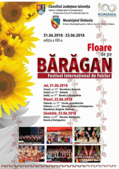 Floare de pe Baragan