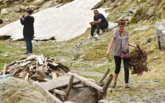 """Flori distruse de turisti: """"Reamintim trogloditilor ca bujorul de munte e specie protejata. In ciuda legendelor, ceaiul de bujor nu mai scoala nimic"""""""