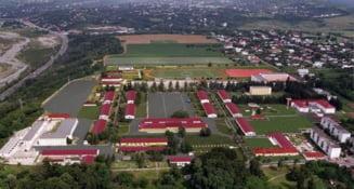 """Focar de COVID-19 la Şcoala de Agenţi de Poliţie """"Vasile Lascăr"""" din Câmpina. 10 elevi şi trei angajaţi infectaţi"""