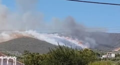 Focul face ravagii in Grecia: Doua localitati de pe insula Zakynthos au fost evacuate (Video)