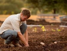 Fondurile disponibile pentru finantarea tinerilor fermieri s-au epuizat rapid. Solicitarile au fost peste asteptari