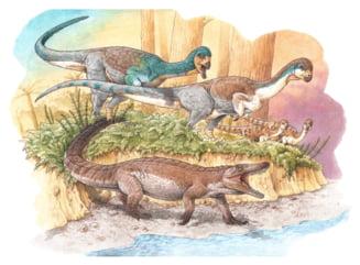 """Fosile cu o vechime de 150 de milioane de ani, ale unui ''bunic'' al crocodilului de astăzi, descoperite în Chile. """"Erau mai mici și nu trăiau în apă"""""""