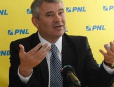 Fostul ministru Gigel Stirbu: Traian Basescu, adevaratul sef al Guvernului