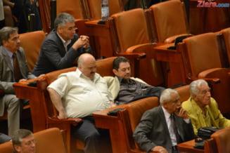 Fostul senator Catalin Voicu afla luni daca face inchisoare