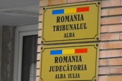 Fostul sot al lui Renate Weber, condamnat la 2 ani de inchisoare pentru evaziune fiscala