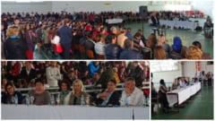 Foto: Dezbatere pentru promovarea invatamantului profesional si profesional-dual de calitate la Liceul Tehnologic Silvic din Campeni
