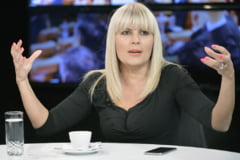 Fratii Gardean, judecati ca i-ar fi dat mita Elenei Udrea, au recunoscut acuzatiile si au vrut sa incheie un acord cu procurorii DNA