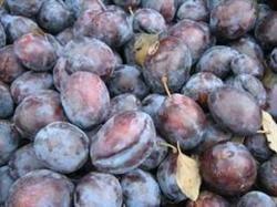 Fructe de toamna - prunele