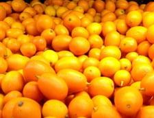 Fructele de kumquat