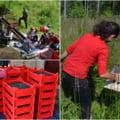 """Fructele de pădure, noul """"aur"""" din Apuseni. Miile de culegători fac bani, iar producția merge aproape integral la export"""