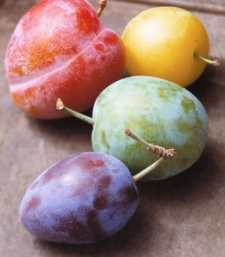 Fructele toamnei: Prunele protejeaza ochii
