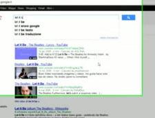 Fulgi de zapada pe Google