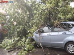 Furtuna a facut ravagii in Romania: 29 de localitati din 16 judete, afectate