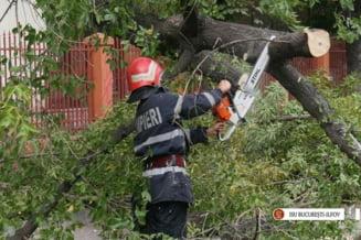 Furtuna de ieri vs. uraganul primarului Firea: Pagube de zeci de ori mai mari, masuri inexistente
