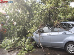 Furtuna in Bucuresti: Masini distruse, copaci doborati