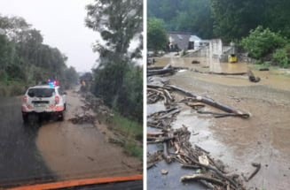 Furtuna la Moieciu de Sus si Fundata: noroiul si copacii rupti au blocat DN 73F si DN73