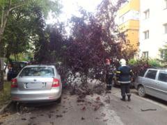Furtunile au facut ravagii in 10 judete: Persoane ranite, acoperisuri smulse, copaci si stalpi doborati