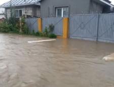 Furtunile fac, din nou, ravagii in tara. Inundatii in Hunedoara si Slatina, zeci de copaci doborati de vant in Valcea (Video)