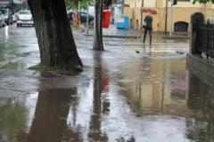 GALAEsIUL LACUSTRU - Carosabilul si trotuarele sunt pline de BALEsI (FOTO)