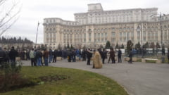 Galceava pe numarul de caini de la stana continua: Ciobanii ameninta cu noi proteste