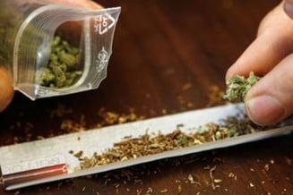 Gardianul iesean acuzat de trafic de droguri, in arest preventiv
