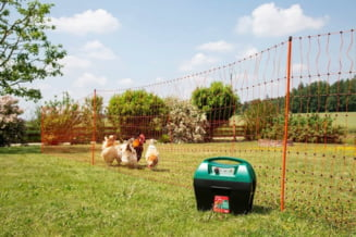 Gardul electric pentru pasuni - este in avantajul fermierului sa investeasca in asta?