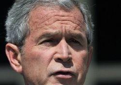 George Bush: Fratele meu ar fi un presedinte extraordinar