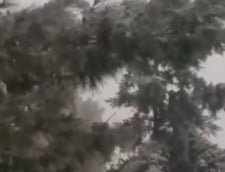 Ger si ninsori neobisnuite in Grecia: Scoli si drumuri inchise la minus 23 de grade (Foto & Video)