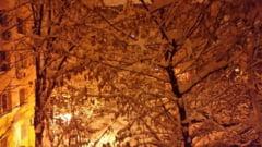 Gerul vine cu cod portocaliu de viscol si ninsori abundente inclusiv in Bucuresti. Stratul de zapada va depasi 40 de centimetri