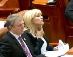Gh. Iancu: Ultima hotarare privind arestarea Elenei Udrea este ilegala