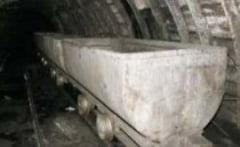 Gheorghe Flutur vrea sa sape din nou in minele Bucovinei