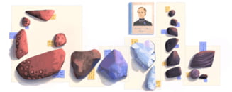 Google o omagiaza pe romanca Elisa Leonida Zamfirescu