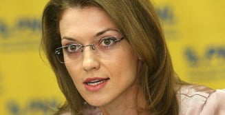 Gorghiu (PNL): Vreau alegeri partiale! Poate un Guvern nu vrea din 4 in 4 ani