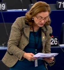 """Grapini a vorbit in PE despre """"procesul politic"""" al lui Dan Voiculescu, Antena 3 si Mircea Basescu"""