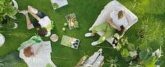 Greenery - culoarea anului 2017. Inspira speranta in vremuri tumultoase