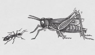 Greierele si furnica in varianta romaneasca (Opinii)