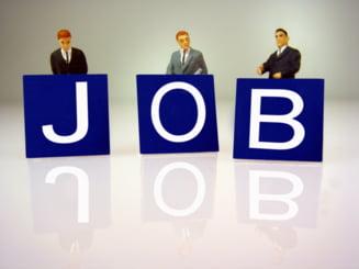 Greseli pe care trebuie sa le eviti cu orice pret intr-un CV