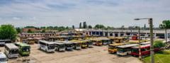 Greva la Satu Mare: Niciun autobuz nu circula