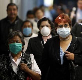 Gripa porcina - Urmareste ultimele evolutii