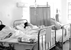 Gripa porcina a ucis cinci romani in 2011