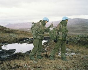 Gripa porcina face ravagii printre soldatii norvegieni