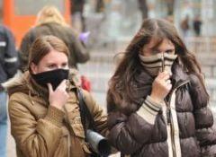 Gripa porcina la granitele Romaniei