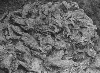 Groapa comuna din timpul razboiului din Kosovo, descoperita in Serbia