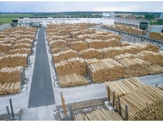 Grupul Holzindustrie Schweighofer isi schimba numele
