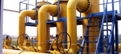 Guvernul a cerut si de la Transgaz si Transelectrica dividende de cate 170 de milioane de lei