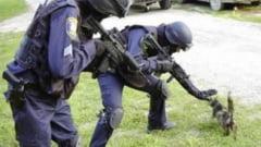 Guvernul a dat unda verde pentru infiintarea Politiei Animalelor